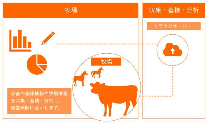 イメージ:畜産データ分析システム